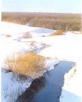Низовья реки Чичера