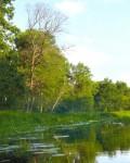 Озеро Совкино