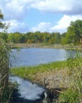 Озеро Костыль