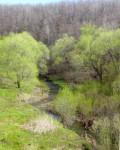Низовья реки Ельчик