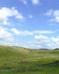 Балка в окрестностях села Лебяжье