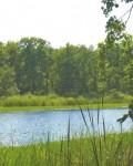 Озеро Куркино