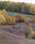 Долина реки Кривец