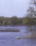 Озеро Могилище