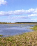 Озеро Крутец